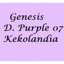Dioxazine Purple 07