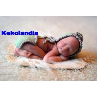 Miniatura bebé Pluma