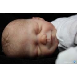 Mini Baby - Zane - Marita Winters