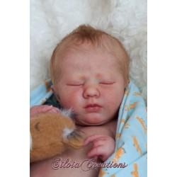 Logan Dormido