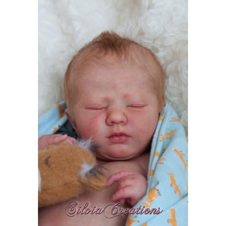 Logan Awake