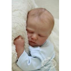 Quinn Asleep