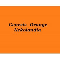 Genesis Orange