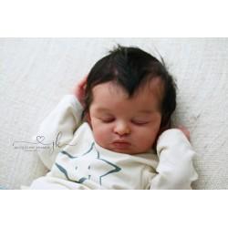 Preorder Yousef - Bonnie Leah Sieben