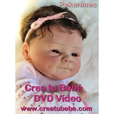 DVD - Crea tu Bebé Reborn