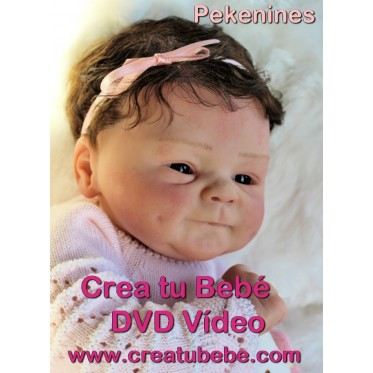 DVD - Create Your Baby Reborn